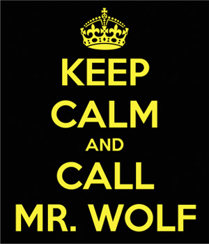 quark mr wolf consulting